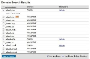 Domain availability search result